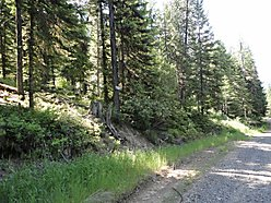 Emida, Idaho, wooded area, hunting, wildlife, hunting cabin, year round access