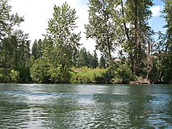 St.Maries Idaho, Waterfront, dock, diving board, river frontage, well septic,  for sale
