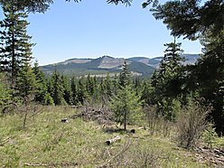 St.Maries, Idaho, elk, buck, acres, land, homesite, hunting camp, hiking, quad riding, horseback riding for sale