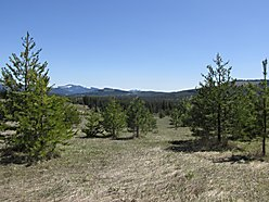 St.Maries, Idaho, land, acres, hunting, hiking, wildlife for sale