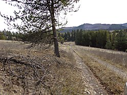 acre, property, farmer, fantastic views, mountains, St. Maries, Idaho, cabin,  for sale