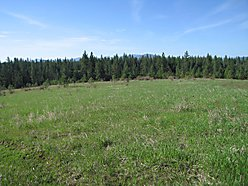 Coeur d'Alene Lake,  St. Maries, Idaho, property, land, building site, highway access, for sale for sale