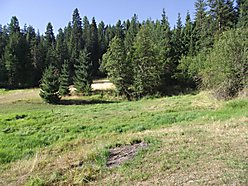 St. Maries, Idaho, Property, private, lots,acres, for sale