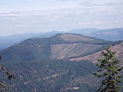 property, for sale, views, St. Maries, Idaho, recreation, hunting, wildlife, huckleberries for sale