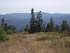 acre, parcel, for sale, St. Maries, Idaho, views, huckelberries, wildlife, hunting, build for sale