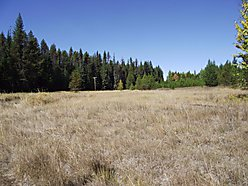 acres, for sale, Clarkia, Idaho, Highway 3, building site, shop, power, recreation for sale