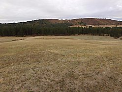 acres, for sale, Plummer, Idaho, building sites, views, mountains, property, county road, pasture,  for sale