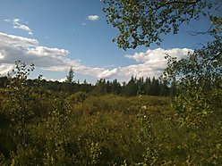 floodwood, minnesota, Fond du Lac, cromwell, state forest, acres, parcel, for sale, ATV, Skiing