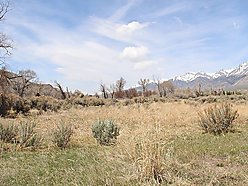 land, for sale, mackay, idaho, rv, build, hunt, fish, hike, recreational, owner financing, views,   for sale