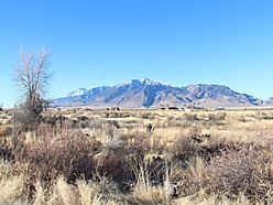 acre, lot, for sale, mountain views, moore, idaho, mackay reservoir, atv, recreational, livestock,  for sale