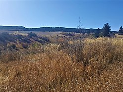 swan valley, idaho, acreage, for sale, snake river, wildlife, snake river, fish, land, views, deer,  for sale