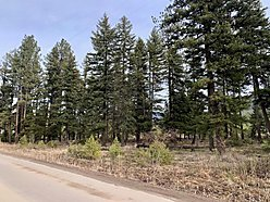 land, for sale, acres, st. regis, montana, well, septic, power, easy access, Clark Fork River, hunt, for sale