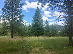land, for sale, superior, montana, acres, septic, clark fork river, wildlife, snake river, private,  for sale