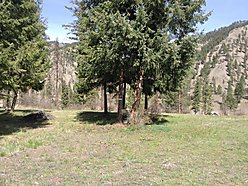 lot, services, Superior, Missoula, Montana, mountains, wildlife, Clark Fork River, subdivision,  for sale