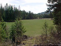 Superior, Montana Property for sale, Quartz Flat, spring, water rights, meadows wildlife. for sale