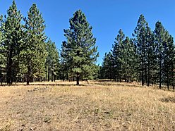 acres, land, for sale, building site, superior, montana, usfs land, wildlife, clark fork river,  for sale