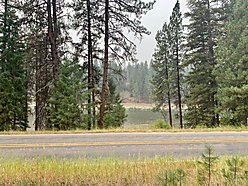 land, for sale, superior, montana, clark fork river, building site, septic, private, usfs land,  for sale