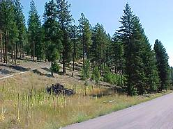 building, sunrise creek subdivision, superior montana, views, easy access,