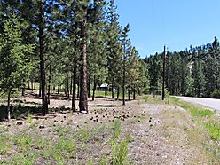 Lot, for sale, superior, montana, recreational, clark fork river, lolo hot springs, wildlife,  for sale
