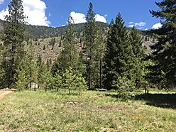 land, acres, for sale, st. regis, montana, clark fork river, views, fish, hunt, quinn's hot springs, for sale