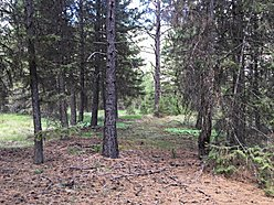 lots, acres, for sale, st. regis, montana, river access, clark fork river, flathead lake, off-grid,  for sale