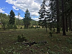 lot, acres, for sale, superior, montana, river access, recreational, clark fork river, hot springs,  for sale