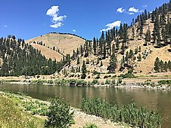level, acres, for sale, superior, montana, river frontage, clark fork river, lolo national forest,  for sale