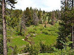mountain property, montana, land, building sites, creek frontage, views, property, creek, for sale, for sale