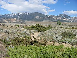 acres, land, for sale, property, Red Lodge, Montana, Yellowstone Park, Beartooth Mountains, for sale