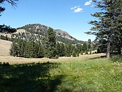 acres, for sale, cascade, montana, large, views, douglas fir forest, missouri river, trout, fishing, for sale