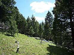 acres, land, for sale, montana, cabin, private, public land, hunt, hike, bob marshall, lincoln,  for sale