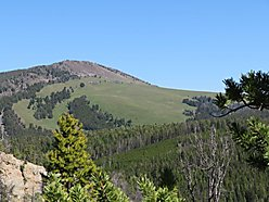 land, for sale, montana, national forest, big hole river, hunt, hike, fish, wise river, views, bull, for sale