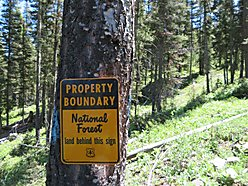 land, for sale, wise river, montana, cabin, building site, beaverhead deerlodge national forest,  for sale