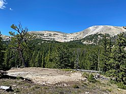 land, for sale, acres, national forest, helena, montana, big hole river, hunt, fish, trapper lake,  for sale