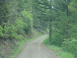 Helena, Montana, land for sale, seller terms, building sites, year around access, wildlife, hunting, fishing,