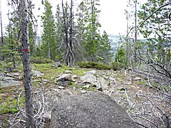 land, for sale, helena, montana, forest service land, tenmile creek, hunt, fish, park lake, spring,  for sale