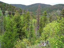 hunting property, mountain property, elk, moose, bear, creek, rocky mountains, acres, bob marshall & scapegoat wilderness, lincoln montana, blackfoot river, wolf creek pass,  for sale