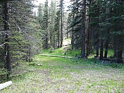 Helena, Montana, Iron ore, wildilfe, acres, building site, springs, wallows, rubs, ATV, Forest service land,