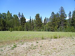 lot, for sale, de borgia, montana, wilidlife, creek, power, well, trout creek, lolo hot springs,  for sale