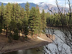 Clark Fork RIver lot, boat launch, wildlife, fishing, river frontage, retirement home, Montana, for sale