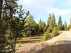 acre, lot, for sale, deborgia, montana, power, pole shed, atv, snowmobile, hunt, lolo hot springs,  for sale