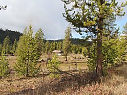 acre, lot, for sale, deborgia, montana, land, national forest, atv, horse, hunt, hike, river, shed,  for sale