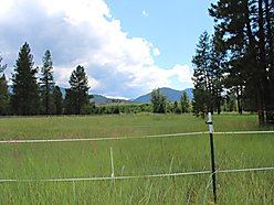land, for sale, clark fork river, river access, wildlife, rv, flathead lake, Lolo national forest,  for sale